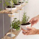 15 DIY trädgårdsprojekt för att öka ditt fastighetsvärde med en budget